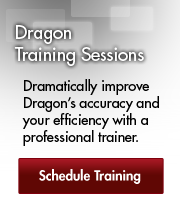Dragon Training Sessions